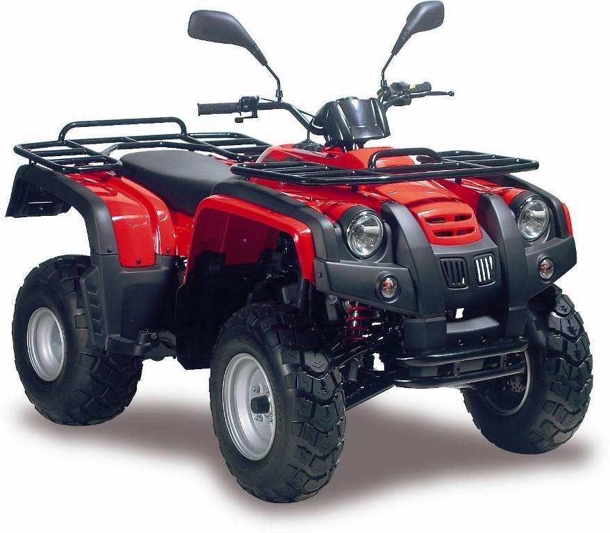 ATV / QUAD 300